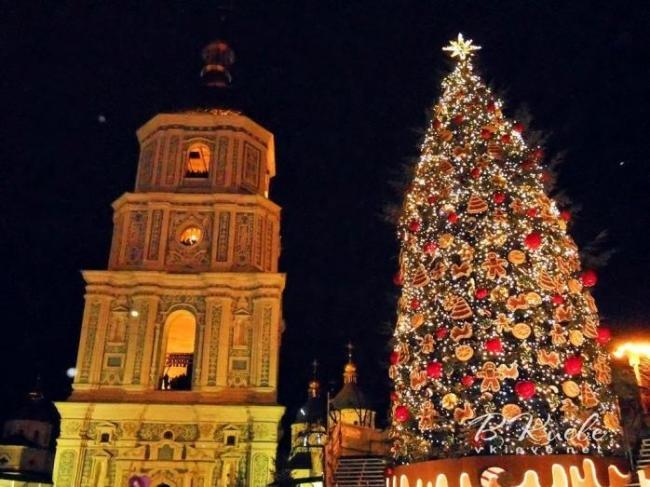 В Киеве установят рекордную новогоднюю елку на сказочном пне
