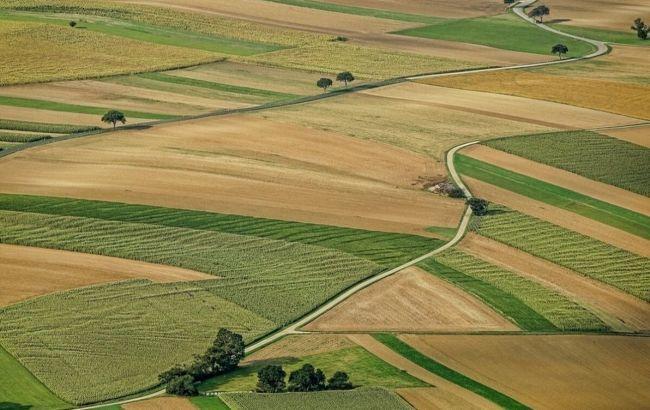 Как украинцы относятся к рынку земли: данные опроса