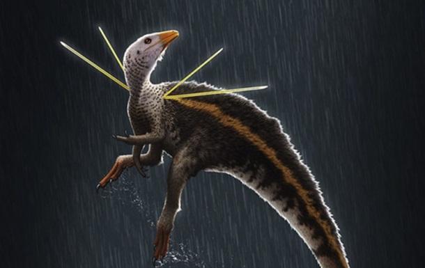 Ученые обнаружили новый вид динозавров
