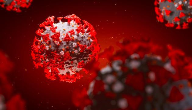 Антитела после COVID-19 сохраняются более девяти месяцев